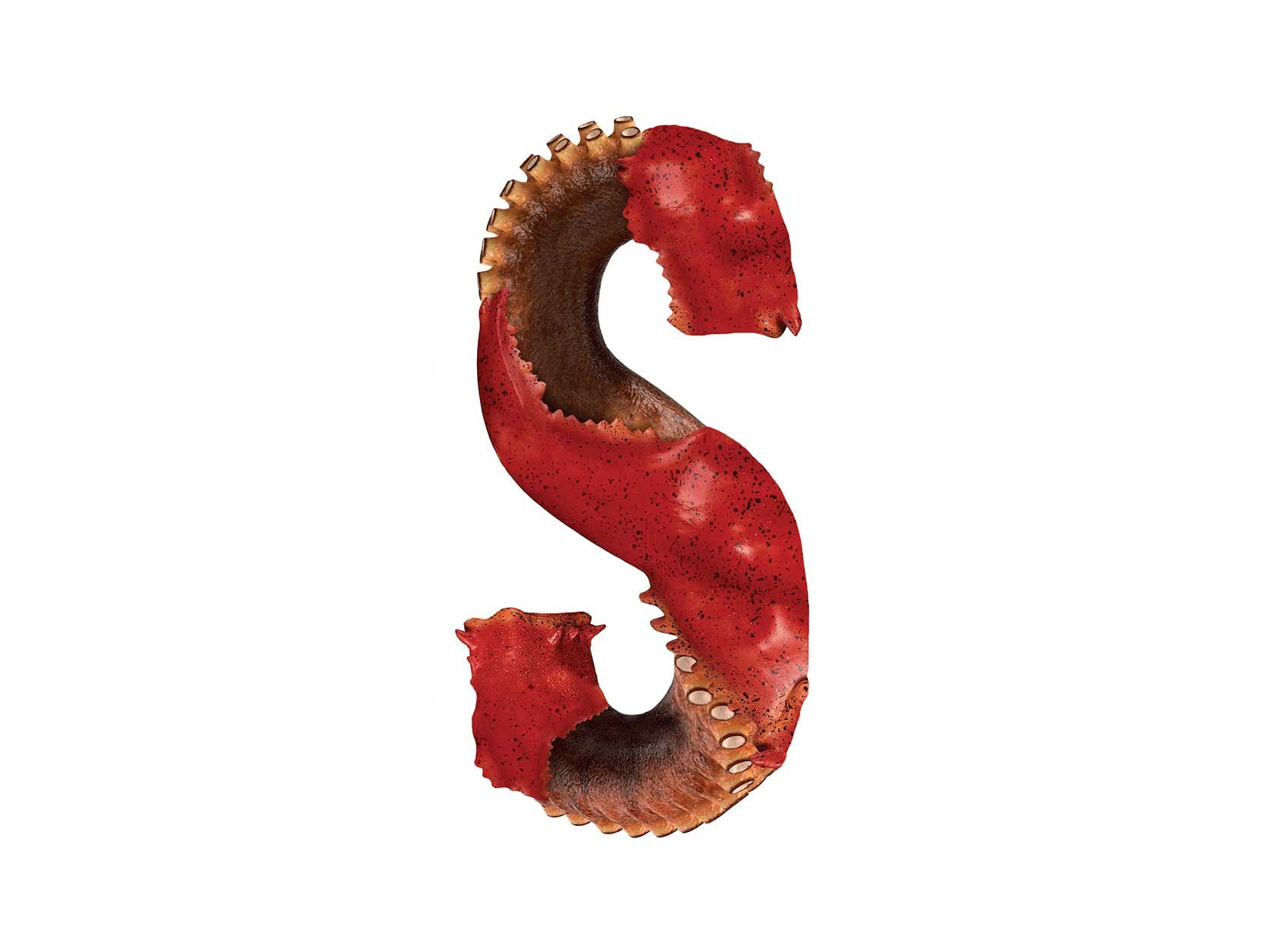 Bird Headed Monster Letter S Design by Furia