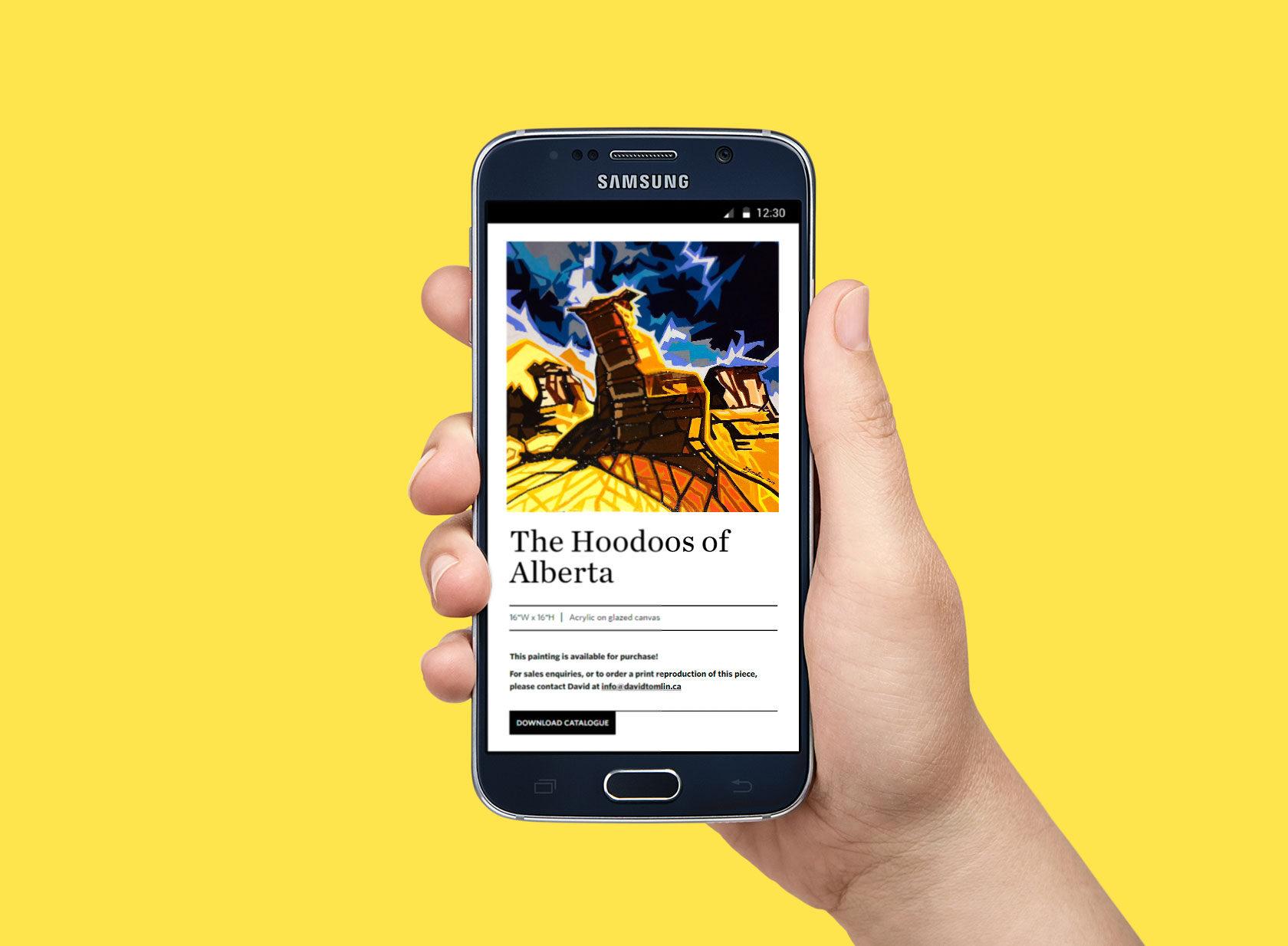 David Tomlin Mobile Website Development by Furia